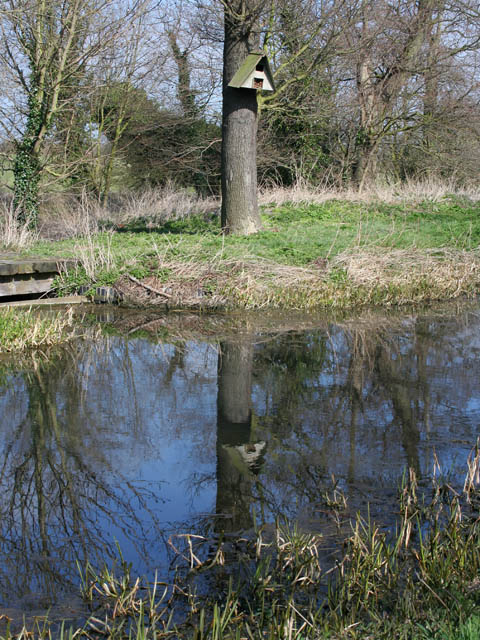 Nesting box by the Grantham Canal