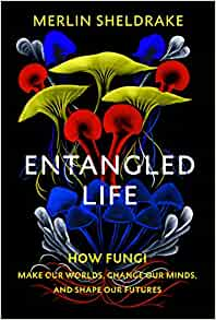 Entangle Life: How Fungi Make Our Worlds, Change Our Minds and Shape Our Futures